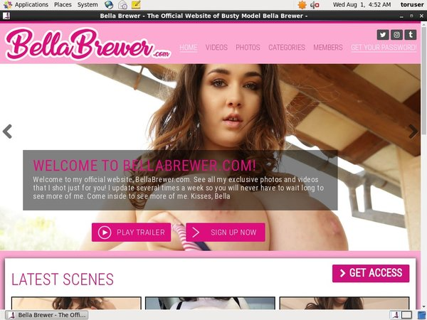 Bella Brewer Renew Subscription