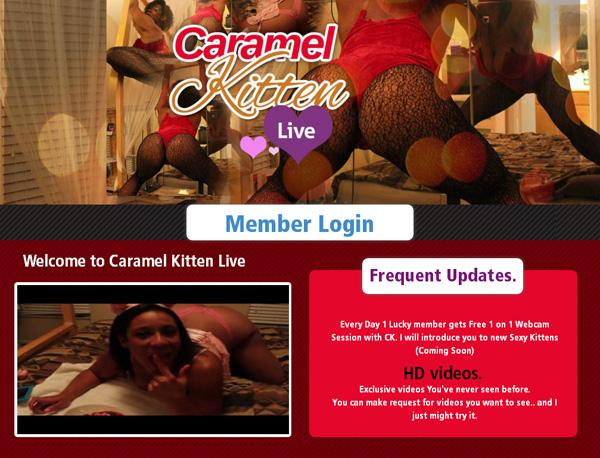 Caramel Kitten Live Account Gratis