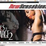 New Sensations Download