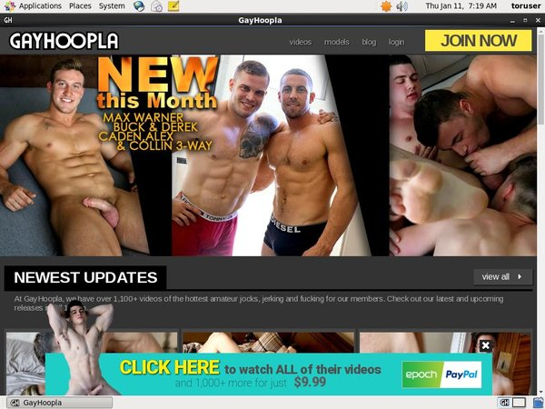 Gay Hoopla Reduced Price